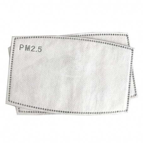 PM Protection Filter 2.5
