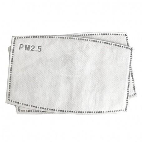 Filtru de protectie PM 2.5