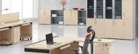 Office Furniture   DesignFriends