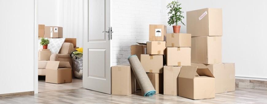 Cardboard Boxes | DesignFriends